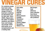 Apple Cider Vinegar Benefits Elegant the Power Of Apple Cider Vinegar