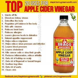 Apple Cider Vinegar Benefits  3 Ways to Ward off Sickness This Winter