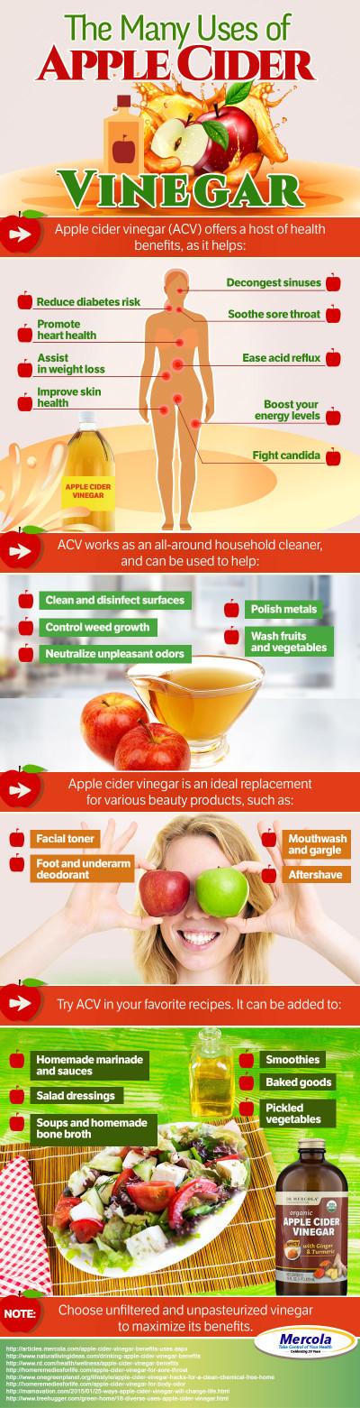 Benefits Of Apple Cider Vinegar Awesome Apple Cider Vinegar Benefits and Uses