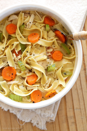 Chicken Noodle Soup  Quick and Easy Chicken Noodle Soup Love Grows Wild