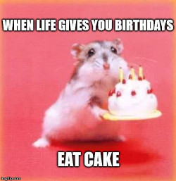 Birthday Cake Meme  Top 100 Original and Funny Happy Birthday Memes