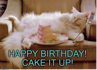 Birthday Cake Meme  Birthday Fat Cat Imgflip