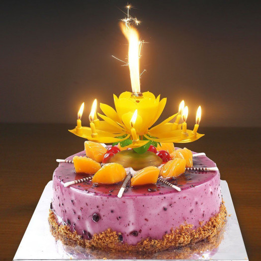 Birthday Cake With Candles  Party Lotus Flower Decoration Birthday Candle Double deck