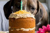 Dog Birthday Cake Beautiful Mini Dog Birthday Cake