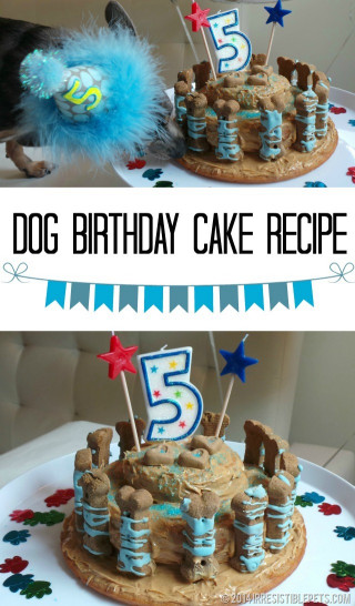 Dog Birthday Cake Recipe  Dog Birthday Cake Recipe for Chuy's 5th Birthday