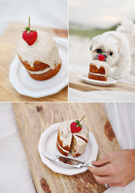 Dog Birthday Cake Recipe  The Best Dog Birthday Cake Recipe Coco's Birthday