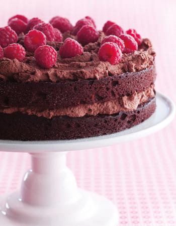 Gluten Free Birthday Cake  Gluten Free Chocolate Birthday Cake Recipe
