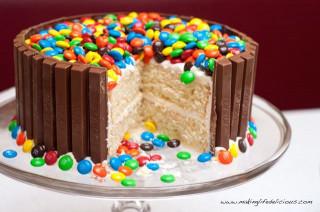 Homemade Birthday Cake  52 Amazing Birthday Cake Recipes for boys girls adults