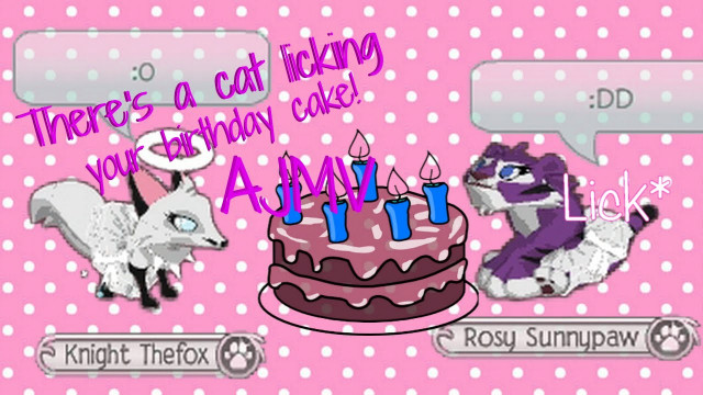 There'S A Cat Licking Your Birthday Cake  Animal jam There s a cat licking your birthday cake