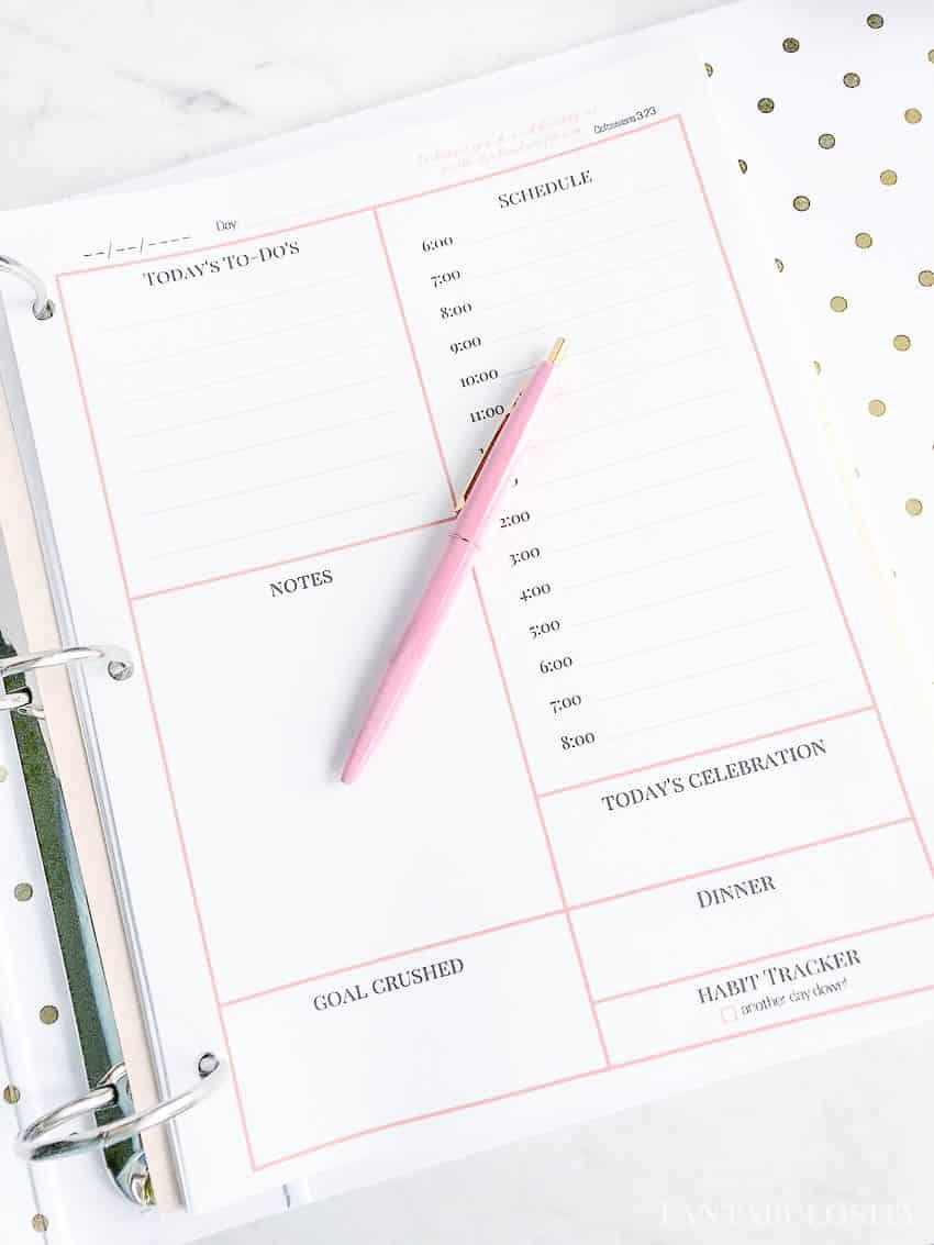 Best Organizer Planner  Daily Planner Free Printable Fantabulosity